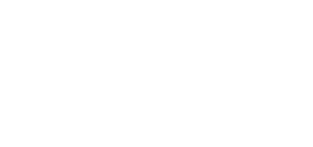 221 Surfside Holdings - Portuguese